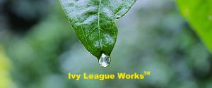 IvyLeagueWorks for Your Consulting Services, Veterans or Medical Writing needs!